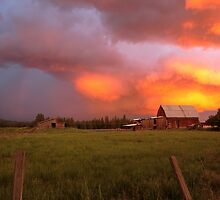 Golden Storm by Bailey Sampson