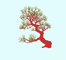 Red Pine Bonsai (Blue Background) by sprucetree