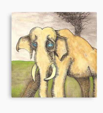 Blue Eyed Elephant Canvas Print