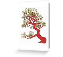 Red Pine Bonsai (White Background)  Greeting Card