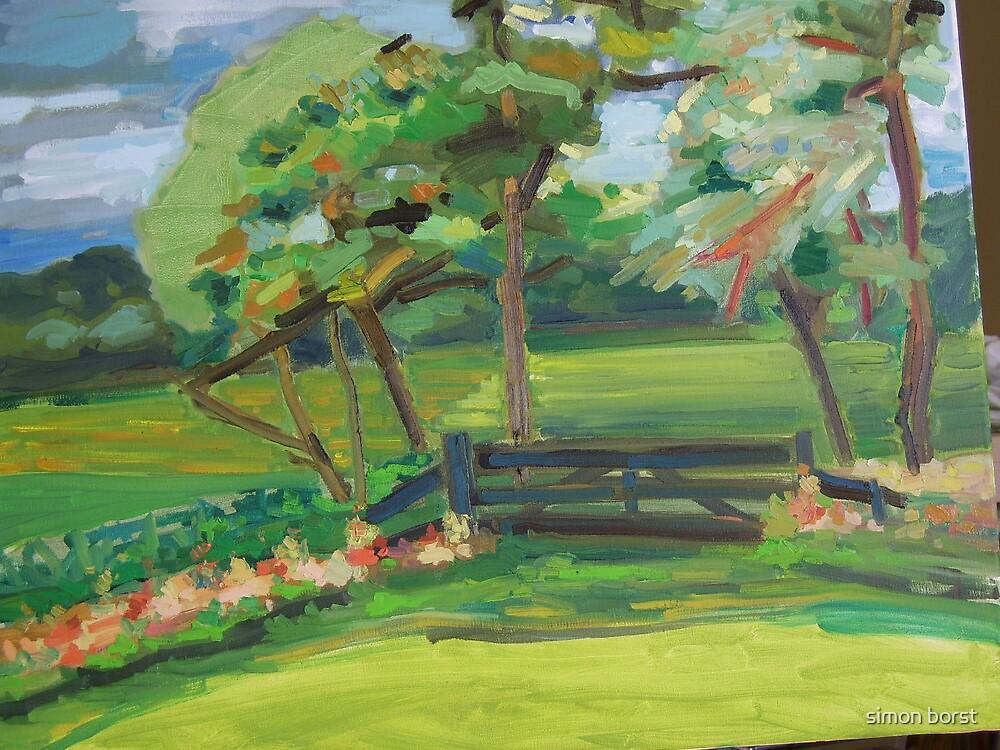 meadow fence  by simon borst