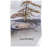 Surviving! Poster