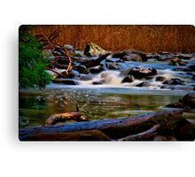 """Along the Cumberland River"" Canvas Print"