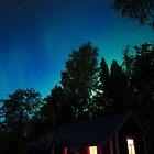 autumn aurora show by Hannele Luhtasela-el Showk