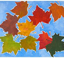 Colorful leaves Photographic Print