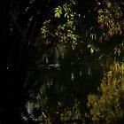 water II - agua by Bernhard Matejka