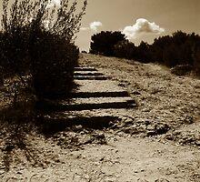 Daudet's Steps by ragman