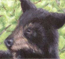 Baby Black Bear by LeftHandPrints