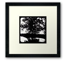 Marrakai  Framed Print