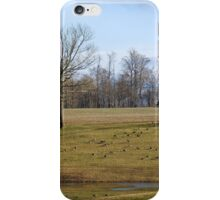 40 Geese iPhone Case/Skin