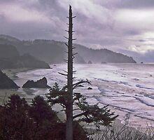 Mysterious Oregon Coast by John Carpenter