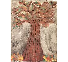 The Reaping Willow Tree Photographic Print