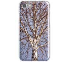 Birch tree against blue sky iPhone Case/Skin