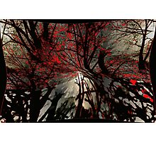 Sleepy Hollow Terror Photographic Print