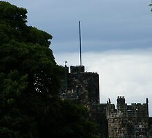 Alnwick Castle  by pat oubridge