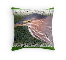 Green-Backed Heron Throw Pillow