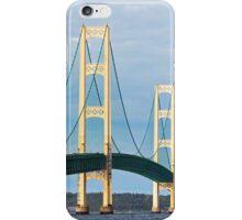 Mac and Seagull iPhone Case/Skin