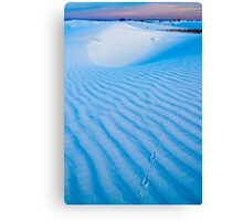 Tracks in the sand. White Sands National Monument (Alan Copson (C) 2007) Canvas Print