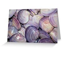 Purple Shells Background Greeting Card