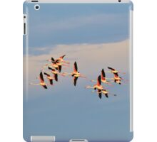 Greater Flamingo - Formation of Color iPad Case/Skin