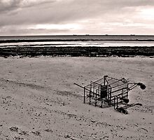 Beached Trolley by LavaMel