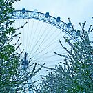 ENGLAND: London 003 by middletone
