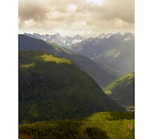 Into The Cascades by psychedelicmind
