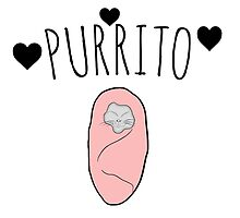 purrito cat  by spectralstories