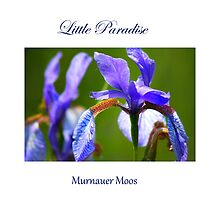 Little Paradise Murnauer Moos by SmoothBreeze7
