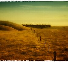 lands end 5 by studiofascino