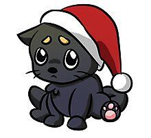Sad Christmas Cat Photographic Print