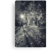 The Last Weekend of Calming Yellow Autumn V Canvas Print