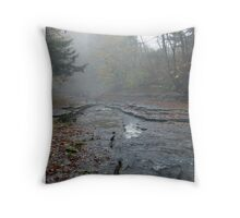 Foggy Creek Throw Pillow