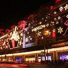 Christmas shopping by Elena Skvortsova