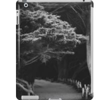 Pfeiffer Beach trail iPad Case/Skin