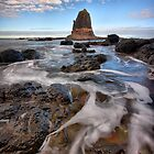 Path to the Pulpit - Cape Schanck by Jim Worrall