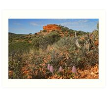 Mount Everard with Wildflowers Art Print