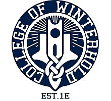 College of Winterhold Est. 1E Photographic Print