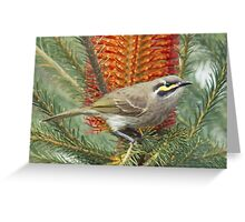 Yellow Faced Honey Eater  Greeting Card