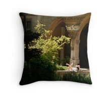 studying? Throw Pillow