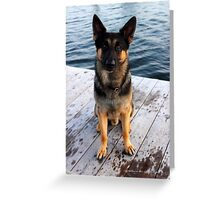 Deutscher Schäferhund - German Shepherd 'Bruno' | Center Moriches, New York Greeting Card