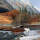 The Wu Shan Fairy Series Red Cranes on river ice by Ze Zhao