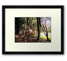 Magical Glade Framed Print