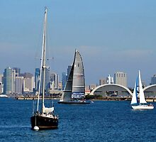 San Diego Bay ~ View From Shelter Island by Marie Sharp
