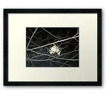 dementor spawn Framed Print