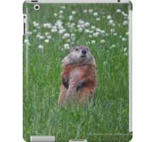 Marmota Monax - Groundhog | Center Moriches, New York  iPad Case/Skin