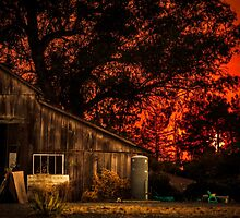 Red sunset in rural California by va103