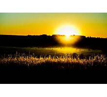 Yellow sunset behind barbed wire Photographic Print