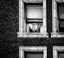 Torn Curtains by va103