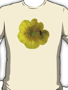 buttercup with insect T-Shirt